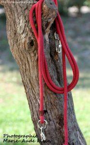 Longe éthologique rouge