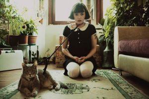 LOL CAT http://hakanphotography.com