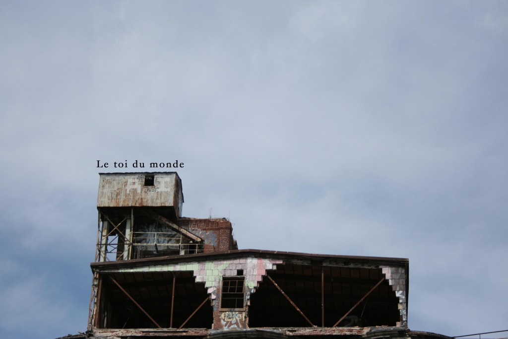 Photographie et collage numérique, 2013.